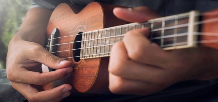 a hands playing the Ukulele