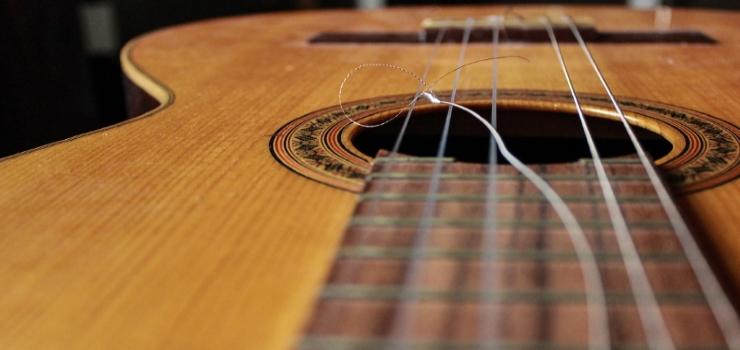 broken strings of the ukulele